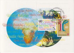 UNO New York 1993 Definitives 2v Maxicard (40189) - New York - Hoofdkwartier Van De VN