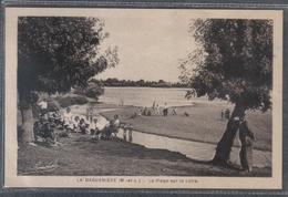 Carte Postale 49. La Daguenière  La Plage Sur La Loire Très Beau Plan - Frankrijk