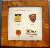 Cadre Avec 4 Pin's, ESSCA ( Ecole Supérieure Des Sciences Commerciales D'Angers) - Administrations