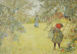 Painting: Carl Larsson : The Apple Harvest.    # 07916 - Paintings