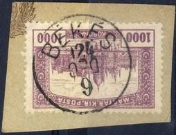 HUNGARY 1924 PArlament 1000 KORONA@ BÉKÉS Cutting - Oblitérés
