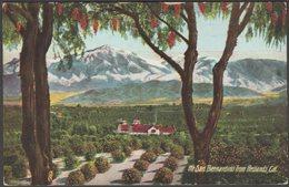 Mount San Bernardino From Redlands, California, C.1910 - Souvenir Publishing Co Postcard - San Bernardino