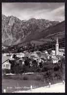 TAMBRE D'ALPAGO (BL) PANORAMA - F/G - V: 1963 - Italia