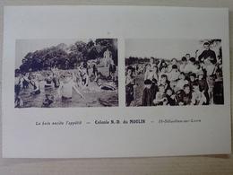 44  SAINT  SEBASTIEN  SUR  LOIRE  COLONIE  N D DU  MOULIN   LE  BAIN  EXCITE  L  APPETIT - Saint-Sébastien-sur-Loire