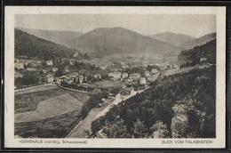 CPA ALLEMAGNE - Herrenalb, Blick Vom Falkenstein - Bad Herrenalb