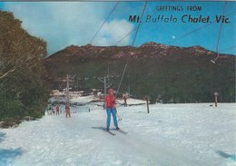 Poma Lift At Dingo Dell. Mt. Buffalo. Victoria.   Austalia. # 07922 - Australia