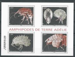 TAAF 2017 - Amphipodes De Terre Adélie - Blocs-feuillets