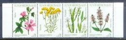 K106- URUGUAY . 2004. FLOWERS. Malva Sylvestris, Achyrocline Satureiodes, Baccharis Trimera, Menthe. - Plants