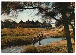 AFRIQUE EN COULEURS-VILLAGE AFRICAIN / WITH COTE D'IVOIRE THEMATIC STAMP-FISH - Costa D'Avorio
