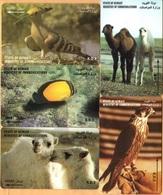 Kuwait - GPT,  Business Machine, Kuwait Fauna, Lot 5 Cards, Camels, Birds, Fish, Used - Kuwait