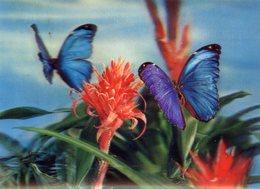 PAPILLONS  HOLOGRAMME 3 D RELIEF - Papillons