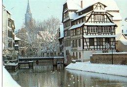 Strasbourg Le Bain Aux Plantes Et La Cathedrale   CPM Ou CPSM - Strasbourg
