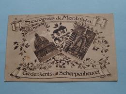 Souvenir De MONTAIGU Gedenkenis Uit SCHERPENHEUVEL ( Phototypie ) Anno 19?? ( Voir Photo ) ! - Scherpenheuvel-Zichem