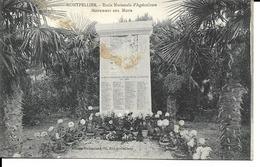 34 - Montpellier - Ecole Nationale D'Agriculture - Monument Aux Morts - Montpellier