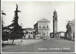 CEREGNANO - Parrochiale S. Martino 1966 - Rovigo