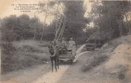 17-GRANDE-CÔTE- LE TRAIN FORESTIER DE LA GRANDE CÔTE L'ARRIVEE - ENVIRONS DE ROYAN - France