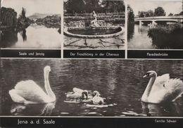 Jena - U.a. Paradiesbrücke - 1972 - Jena