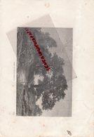 77- FONTAINEBLEAU - FORET - GRAVURE 1885 - Stiche & Gravuren