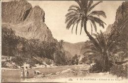 CPA Algérie - El Kantara, L'oued Et Les Gorges - Scenes