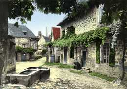 CPSM Grand Format COLLONGES LA ROUGE  (Corrèze) L'Entrée Du Village Colorisée RV - Autres Communes