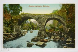 Postcard Ireland - Shooting The Rapids, Killarney - Valentine Series, Dublin - Kerry
