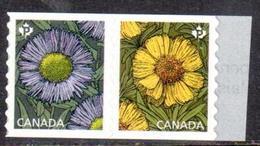 Canada Paire Roulette Marguerites ** - 2016 - Roulettes