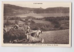 ATTELAGE DE BOEUF - Agriculteurs - Lac Chambon - Château De Murola - Animée - Attelages
