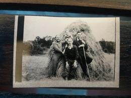 PHOTO ORIGINALE AGRICULTEUR DEVANT UN TAS DE FOIN 1948 - Landbouw