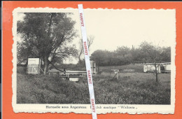 "HERMALLE SOUS ARGENTEAU  -  Le Club Nautique ""Wallonia""  -  Hemlot - Oupeye"