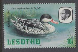 D160522  Lesotho 1981 DUCK - Bird MNH - Lesotho (1966-...)