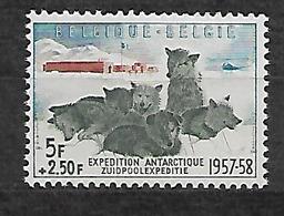 #455A# BELGIUM YVERT 1031, MICHEL 1073 MNH** ANTARCTIC, DOGS, CHIEN, PERRO. - Neufs
