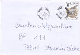 Nouvelle Calédonie, Lettre De KONE, 2000 ( NC7) - Briefe U. Dokumente