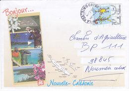 Nouvelle Calédonie, Lettre De LA FOA, 2001 ( NC12) - Briefe U. Dokumente