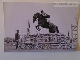 D160984 Horse Pferd Cheval - Reiter Und Hirtentage  1972 - Pferde
