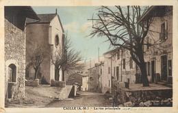 CAILLE RUE PRINCIPALE 06 - France