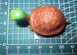 TARTARUGA HONG KONG 913 - Schildkröten