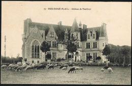 VIEIL-BAUGE - 49- Chateau De Montivert(imprimer Montiver) Bovins -  Historique Manuscrit Au Verso - Recto Verso - Other Municipalities