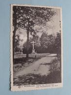 Wechelderzande Domein Het Blommerschot / Het Kruis ( 10 - Albert / L. Proost-Poels ) Anno 19?? ( Zie Foto's ) ! - Lille