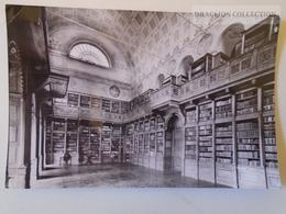 D161008  Library  Bibliotheque Bibliothek - ZIRC - Libraries