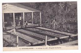Guadeloupe N°12 Le Séchage Du Café Propriété St Charles VOIR ZOOM Et DOS Edition Catan Expo 1931 - Guadeloupe