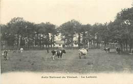 78 , LE VESINET , Asile National , La Laiterie , * 236 01 - Le Vésinet