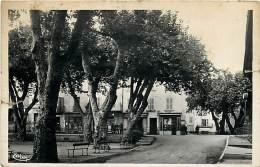 83  , LE LUC , Place De La Liberté , * 237 09 - Le Luc