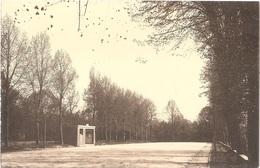Dépt 80 - ROLLOT - ÉPREUVE De CARTE POSTALE (photo R. LELONG) + PLAQUE De VERRE D'origine - Longues Paumes - (Fraissaix) - France