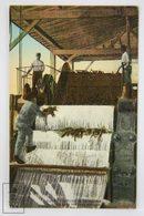 Postcard Republic Of Cuba - Sugar Cane Pressing Machine - Nº 66 - Animated Early 20th Century - Cuba