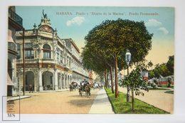 Postcard Republic Of Cuba - Habana - Paseo Prado Y Diario De La Marina - Promenade - Nº 113 - Horse Carriage - Cuba