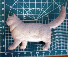 GATTO - Katten