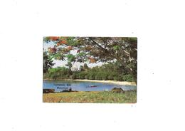 Carte Postale Mauricius Ile Maurice Tombeau Bay Mauritius - Altri