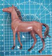 CAVALLO - Horses