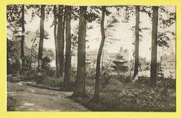 * Sint Katelijne Waver (Antwerpen - Anvers) * (E. & B.) Institut Des Ursulines, Dans Le Bois, Parc, Jardin, Rare - Sint-Katelijne-Waver