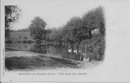 """RIORGES (Loire) - Une MARE Aux CANARDS - Carte """"précurseur"""" - Non Voyagée - Riorges"""